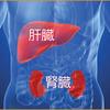 腎臓+肝臓ケア=癌治療 <乳がんブログ Vol.214>