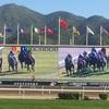 香港国際競馬