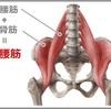 20.腸腰筋の活性化がうまくいかない時の対処法