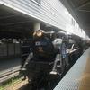 【子連れで日帰り旅行】秩父鉄道SLに乗って長瀞に行ってきた