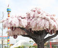 """レゴランドに咲き誇る""""桜の木""""を見ながらお花見を満喫してきました!【2021年】"""