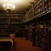 文学部英文学科と外国語学部英米学科の違いとは-文学部は文学を外国語学部は社会科学を研究する