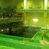 原発~静岡・浜岡原発の使用済燃料プールを見た