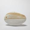 「海がつくった魚石」現代アート  石 Contemporary Art 偶偶絵石vol.20