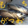 貴重なとれたて旬の魚!絶品の『モチガツオ』を和歌山・白浜で食す!