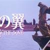 映画『鳩の翼』