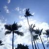 ハワイ島、行く前に知っておくと便利なこと