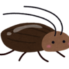 【ムカデ】田舎生まれのアラサー女は害虫に強い!!!【蜘蛛】