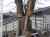 オヤコフンさんと一口太田姫稲神社