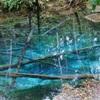 10数年ぶりの神の子池 神秘の青色は変わっていませんでした