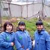 中国パンダ保護区