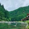 キャンプ1日目✦曇り空の中冷え冷えの川に入る【川遊び編】