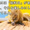 【ドラマ名言】連休明けの仕事って、つらいですよね?(わたし、定時に帰ります。)