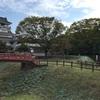 小山城(静岡県吉田町)-城好きの見所は展望台足元の遺構たち