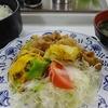 豚肉と野菜のショウガ炒め