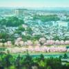 アニメ「響け ! ユーフォニアム」1話を観た。