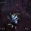 大盾をつくった男10 オタカラ攻略 大蟻塚の荒地編 モンスターハンターワールド:アイスボーン