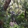 【WDW】フロリダオーランドWDW日記⒇/Animal Kingdom【ディズニーブログ】【旅行記】