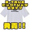 【EVERGREEN】ゆったりとしたアパレル「B-TRUEビッグTシャツAタイプ」発売!