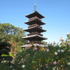 70番札所本山寺には国宝と五重塔がある