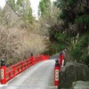 京都の梅 今熊野観音寺