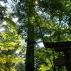 猿丸神社から禅定寺へ