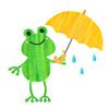 【風に強い】おちょこにならない2重構造傘を買って1年経った感想【ほんとかな??】