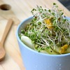 ダイエット中の便秘解消にブロッコリースプラウトを食べると良いかも