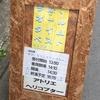 2017.7.4 玉田企画「今が、オールタイムベスト」