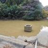 左鉢池(千葉県茂原)