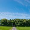毎日一枚。「晴れた日に。」おすすめ:☆☆☆☆ ~写真で届ける伊勢志摩観光~