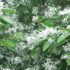 今日の誕生花「ナンジャモンジャ」5月に雪が降ったような花!