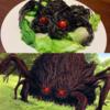 【もののけ姫】アシタカが土蜘蛛のようなイノシシを倒す浅薄さ