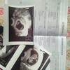 ドイツでの妊娠生活☆母子手帳の翻訳⑨妊娠経過時の所見について(妊娠初期)