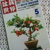 【感想】「盆栽世界 2011年5月号」 新企画出版局
