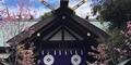桜開花宣言の出た日に東京大神宮へお参り