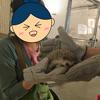 癒されたいキミ!動物たちとふれあえる「モフ・アニマルカフェ、イーアス高尾店」へGO!