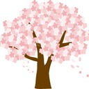 sakura☆street's blog