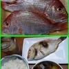 17/09/14の晩ご飯(連子鯛の塩焼き)