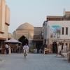 2014年 シルクロードのオアシス ウズベキスタン走行