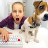 VBAでIE操作!インターネットを開いて自動でウェブデータ取得する方法(事例とコード付)