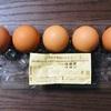 「平飼い卵」を選ぶ理由。ストレスフリー、抗生物質、そしてわたし達の生き方。