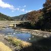 3-215   箱根旅日記④〜やっぱり富士山が好き!?〜
