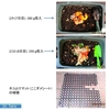 プランター式生ゴミ処理8日目