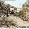 沖縄戦証言 護郷隊