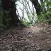 ララムリ=タラウマラ族のロレーナさんが、ハセツネを走られたそうです!!