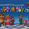 スーパーマリオブラザーズ(Wiiマリオコレクション)
