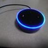 Amazon echo dotが届いたのでVolumioのラズパイにBluetooth接続してみた