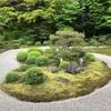 令和元年、京都の青もみじ巡り 〜曼殊院門跡
