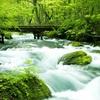新緑の季節におすすめ 東北を彩るネイチャースポット
